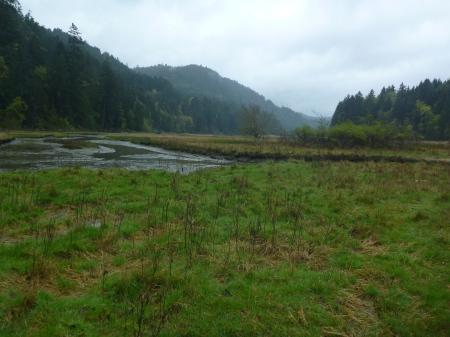 Estuary 1