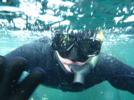 Snorkelling Syver
