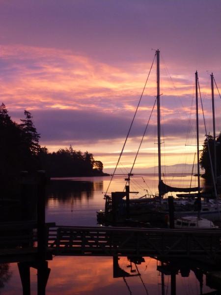 Pedder Bay sunrise - 17 December 2013