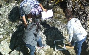 measuring biodiv