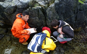 The students are learning about marine ecology by doing it.