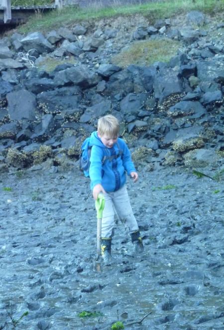 Simon mudflats