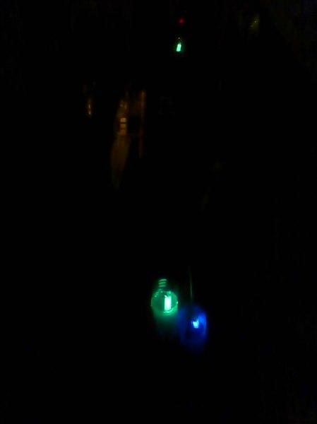 Light traps2