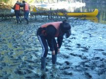 Extracting a gumboot