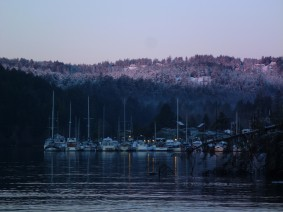 Pedder Bay Marina