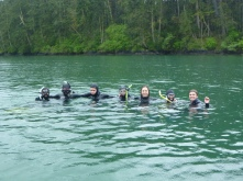 D block snorkellers