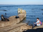 Sea lion & Nadia