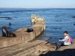 Sea lion &Nadia