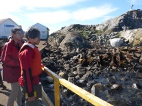 Students & sea lions